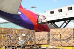 아시아나항공, A350 여객기 2대 화물기로 추가 개조