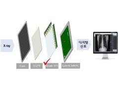 LG디스플레이 '의료용 엑스레이 영상' 신시장 진출