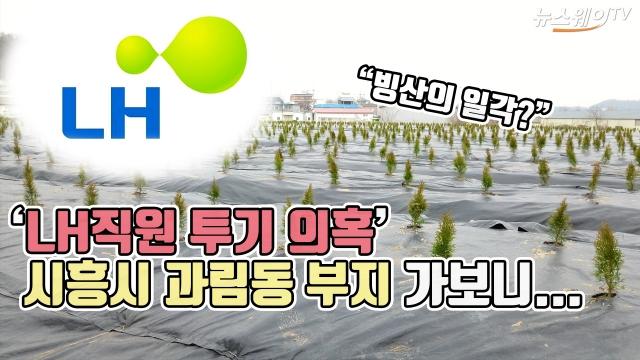 'LH직원 투기 의혹' 시흥시 과림동 부지 가보니...