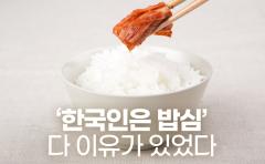 [카드뉴스]'한국인은 밥심' 다 이유가 있었다