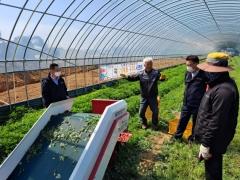 영광군, 쑥 재배 포기 농가 기계화 수확으로 '웃음꽃'
