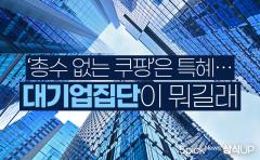 [상식 UP 뉴스]'총수 없는 쿠팡'은 특혜···대기업집단이 뭐길래