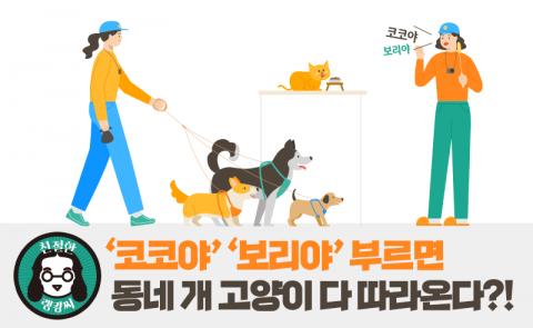 '코코야' '보리야' 부르면 동네 개 고양이 다 따라온다?!