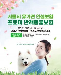 DB손보, 서울시와 '유기견 안심보험' 지원