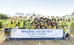 NH농협카드, 농촌 일손돕기 사회공헌활동 진행