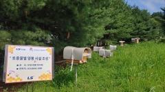 LS, 환경 살리기 위해 '토종꿀벌 육성 사업' 동참