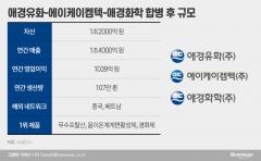 화학3사 의기투합 '애경케미칼' 11월 출범···신임 CEO 관심