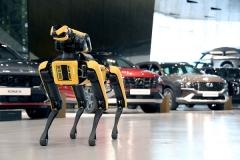 현대차그룹, 보스턴 다이내믹스 '공장 안전 서비스 로봇'···기아 오토랜드 시범 운영