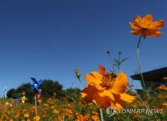 [내일 날씨]아침·저녁 쌀쌀하고 낮엔 더워 ···오후부터 구름 많아져