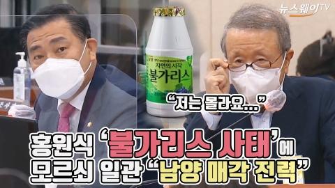 """홍원식 '불가리스 사태'에 모르쇠 일관 """"남양 매각 전력"""""""