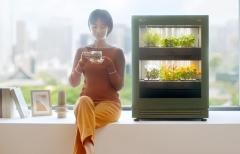 스마트 정원이 집 안으로···LG전자, 식물가전 '틔운' 출시