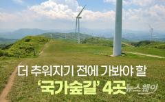 [카드뉴스]더 추워지기 전에 가봐야 할 '국가숲길' 4곳