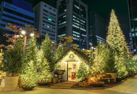 현대백화점, 무역센터점에 크리스마스 트리 설치